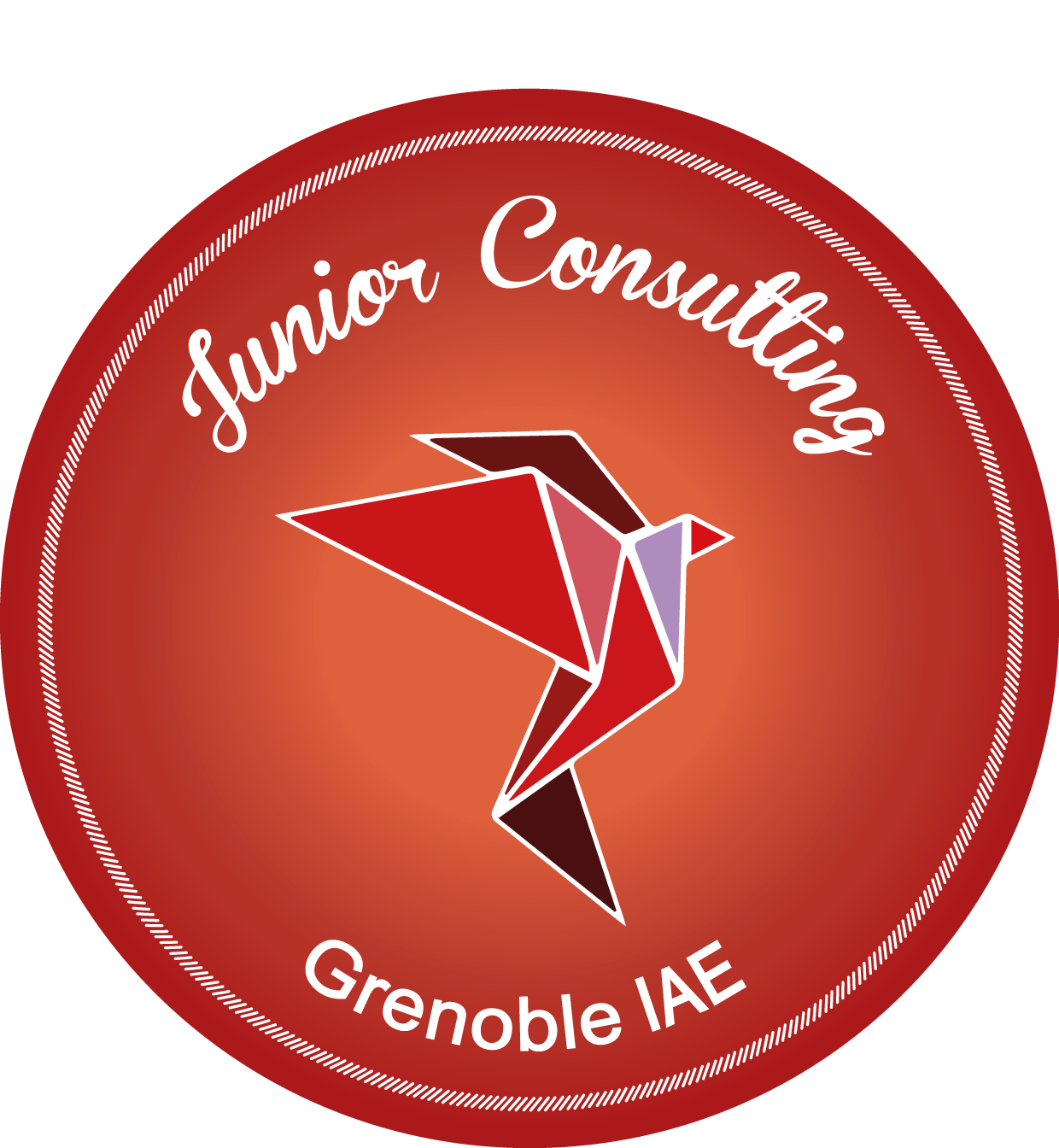 logo junior consulting